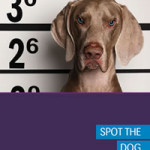 Are there any dogs hiding in your portfolio?