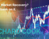 Stock- market recovery? Don't bank on it.